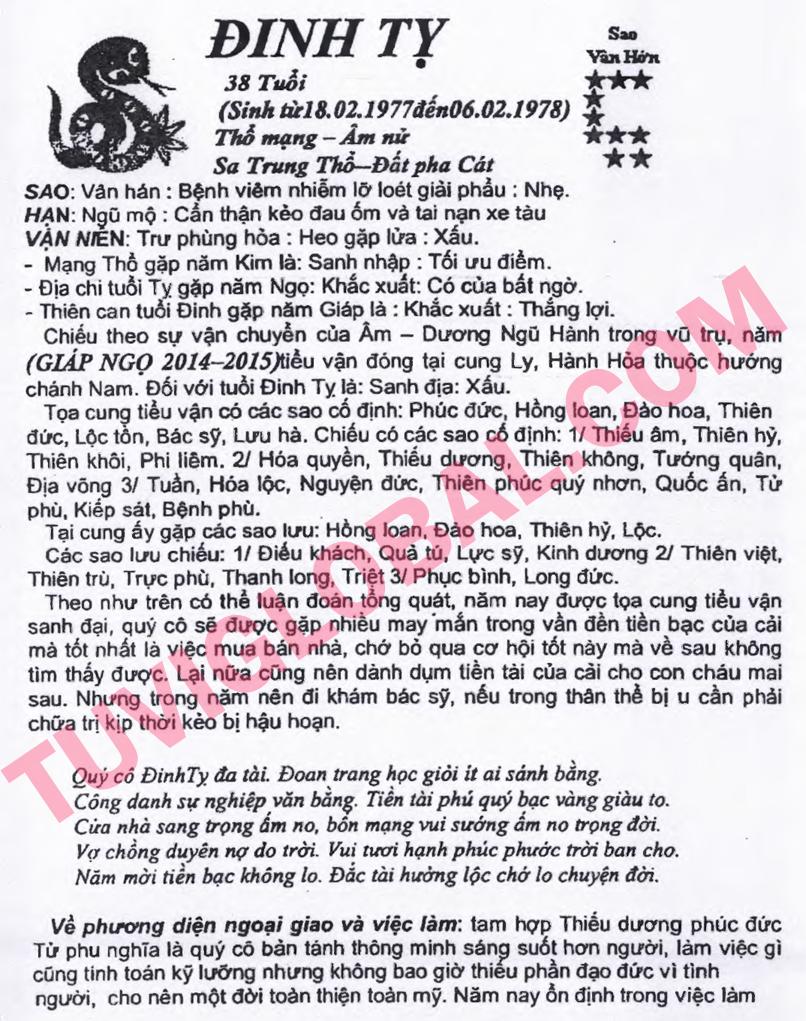 vi tuổi Đinh Tỵ nữ mạng - Thái Ất tử vi 2014 Giáp Ngọ