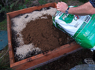 Peat Moss Being Added to Bed