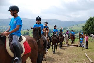 Campamentos de equitación 2016