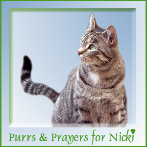PURRS FOR OUR BUDDY NICKI