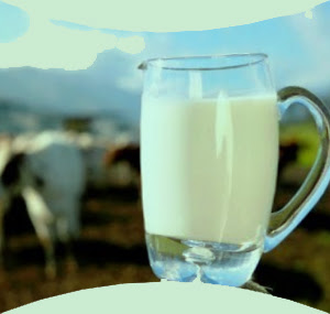 Alasan Ilmiah Untuk Tinggalkan Kebiasaan Minum Susu Sapi