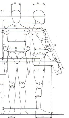 Gicela antropometr a for Medidas antropometricas del cuerpo humano