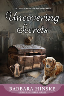 Goddess Fish Promotions Cover Reveal Book Blast: Uncovering Secrets by Barbara Hinske