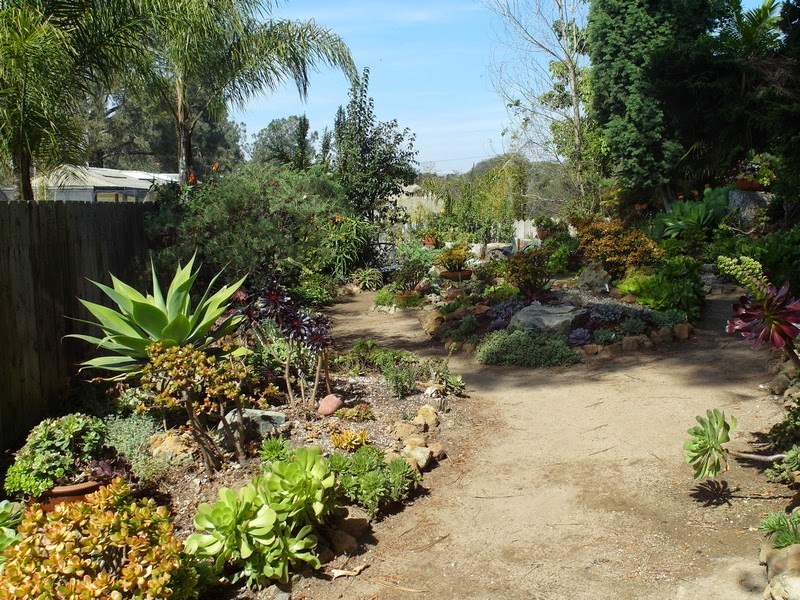 The Garden Developed From A Farm, Particularly By Ruth Baird Larabee, A  Keen Plant Collector Who Donated The Land To The County Of San Diego In  1957 As A ...