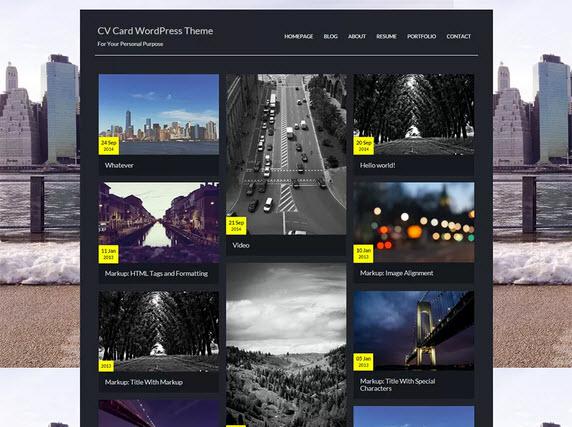 CV Card Wordpress theme