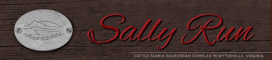 Sally Run