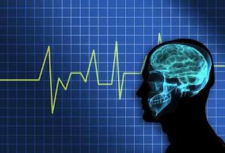 Fakta Tentang Otak Manusia