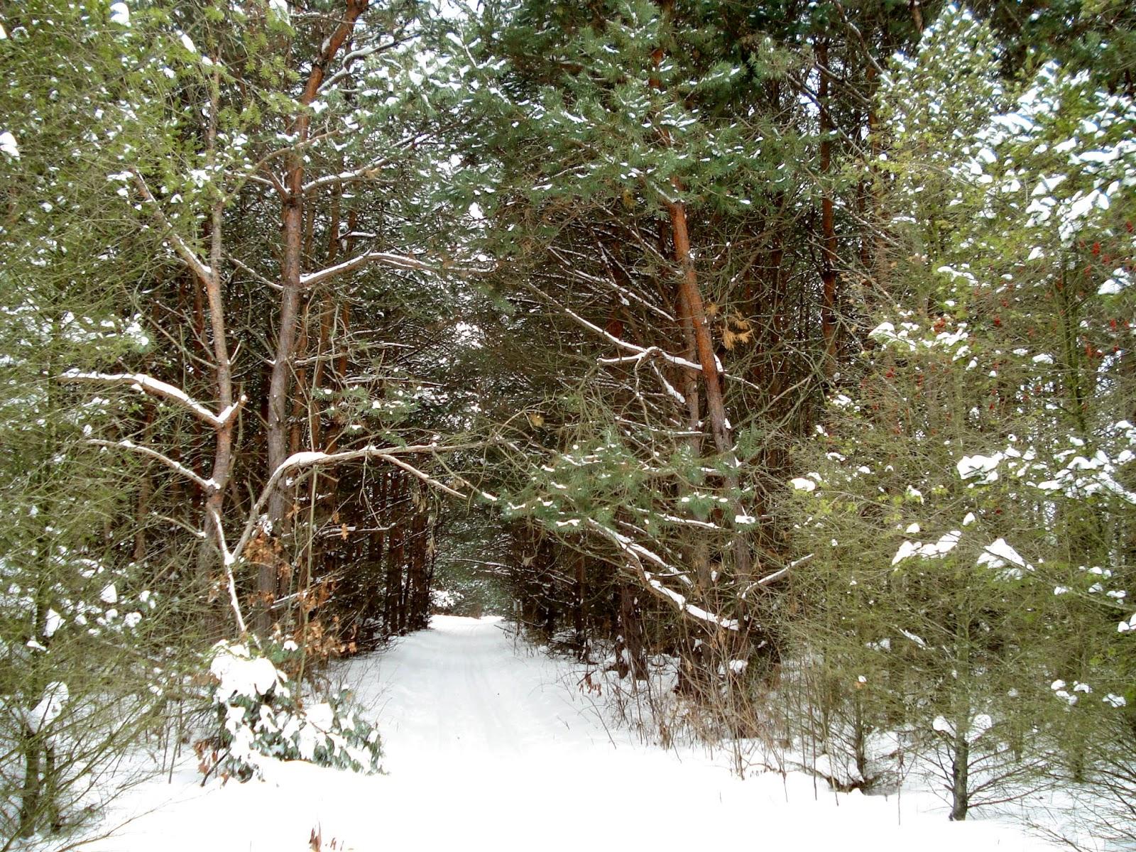 Sarett Nature Center Cost