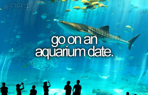 aquarium dating Are you single and tired to be alone this site can be perfect for you, just register and start chatting and dating local singles.