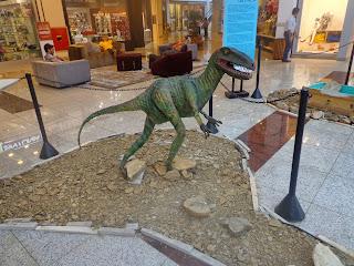 Exposição de fósseis.