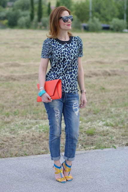 Zara orange clutch, leopard print blouse, Fashion and Cookies