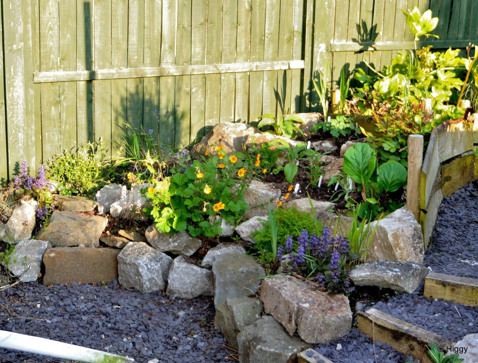 1000 images about garden rockery ideas on pinterest for Rockery designs for small gardens