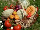 Tous les lundis matin : savourez le grand marché de Caussade, au coeur de la ville !