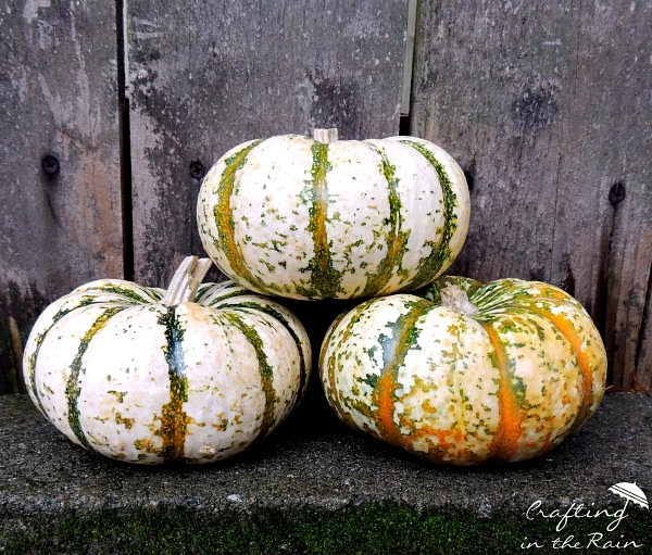 How to decorate pumpkins | Crafting in the Rain