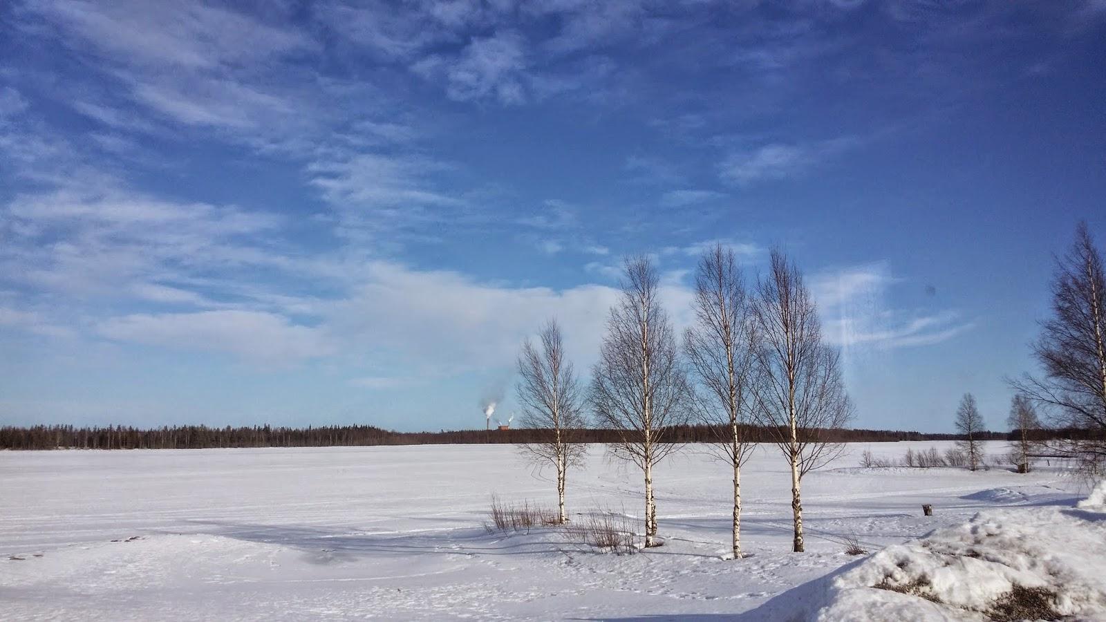 Skärgårdsvillan: mars 2015