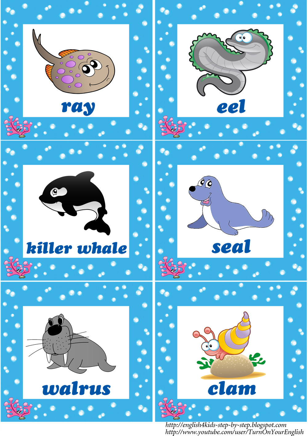 sea animals flashcards...