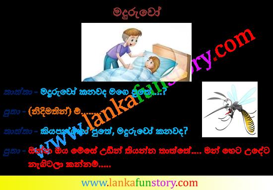 Sinhala Jokes-Mosqutioes