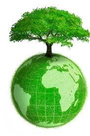 green ventures