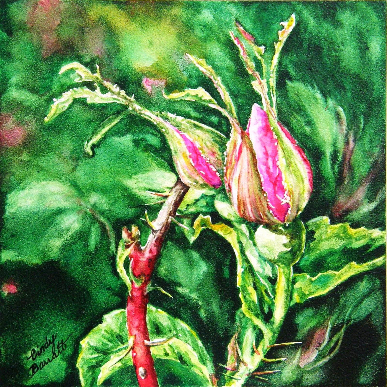 Alberta Rose Buds #1