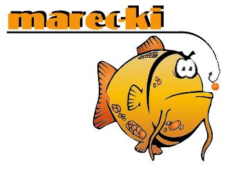 Blog Marec-ki'ego