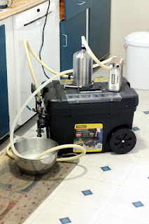 Running my chilling rig to sanitize.