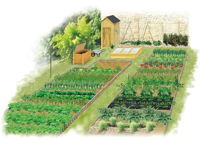 Au tour du jardinau tour du jardin potager for Au jardin potager