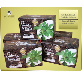 Daun Insulin, Teh Daun Insulin, Obat Diabetes, Obat Diabetes Alami, Herbal Diabetes