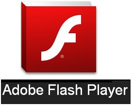 Flash player version 9.0