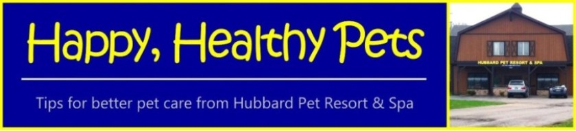 Happy, Healthy Pets - Tips for better pet care from Hubbard Pet Resort & Spa