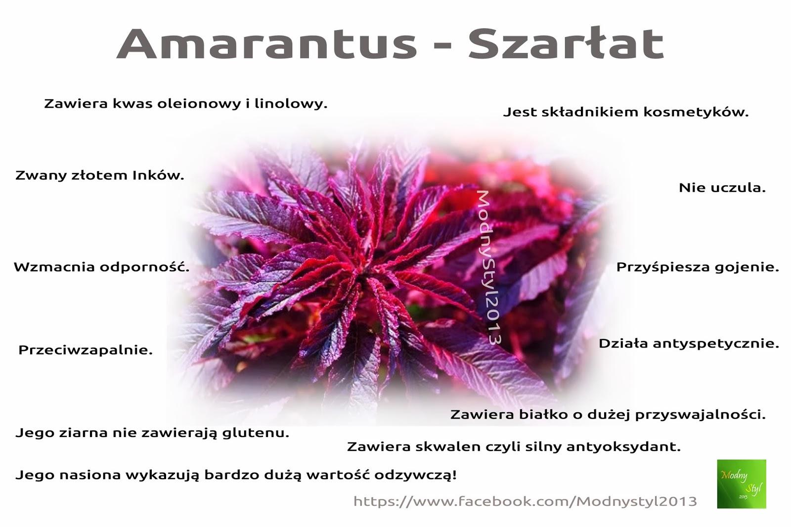 Amarantus zwany skarbem Inków