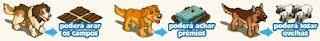 Tarefas do seu Pet