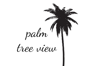 palm tree view