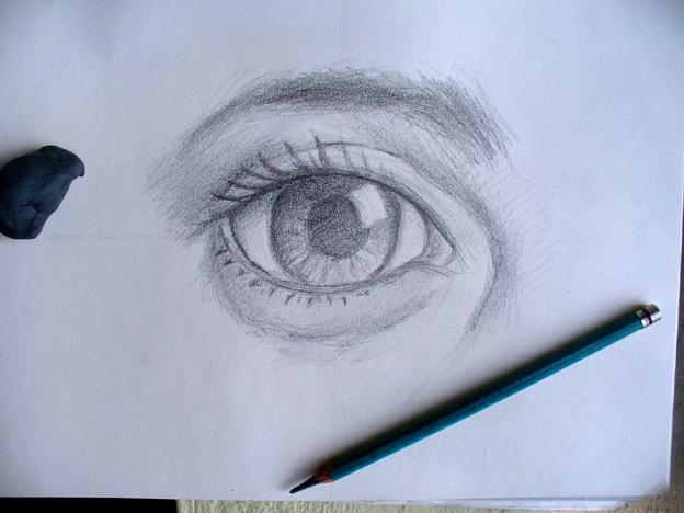 Esquema del ojo para colorear - Imagui