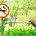 Inilah Yang Terjadi Pada Tubuh Saat Berhenti Merokok
