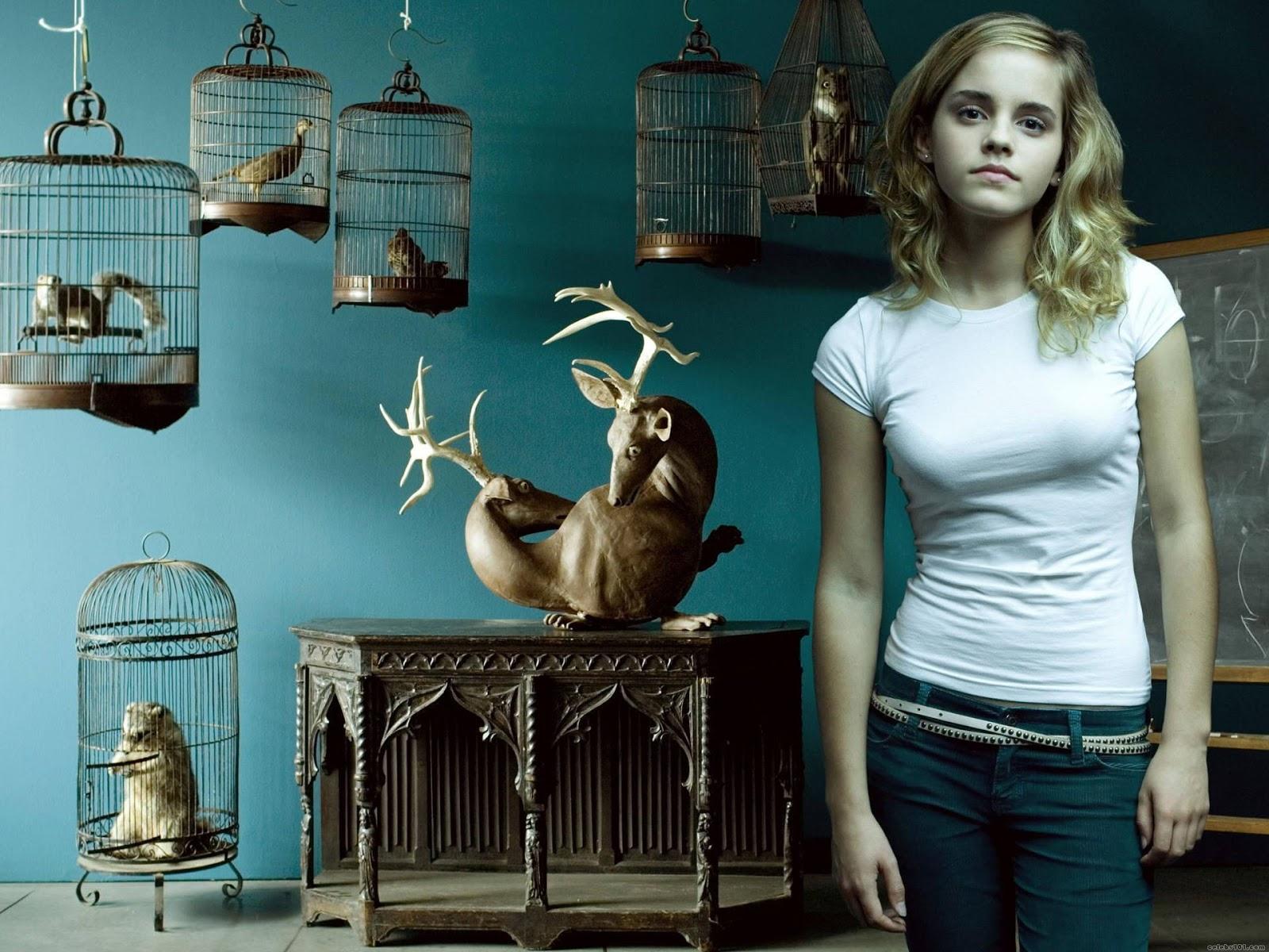 Actress Emma Watson Wallpapers HD