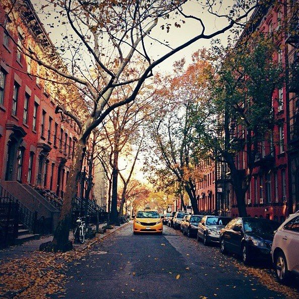 NYC streets in the Fall