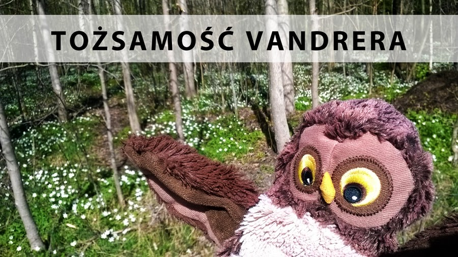 tożsamość Vandrera, wiosenne zawilce