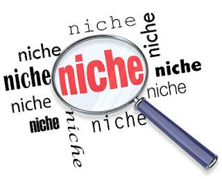 select a niche