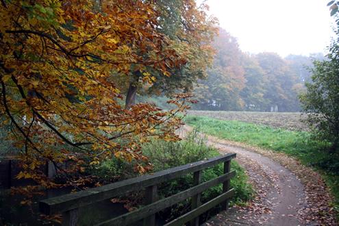 Achterhoek herfst