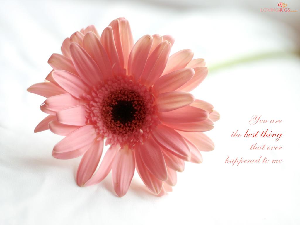 http://4.bp.blogspot.com/-eX6bs7OpqXA/T4xmyQmLtmI/AAAAAAAABZA/BXyx-HVJKIw/s1600/Loving+Hugs.jpg