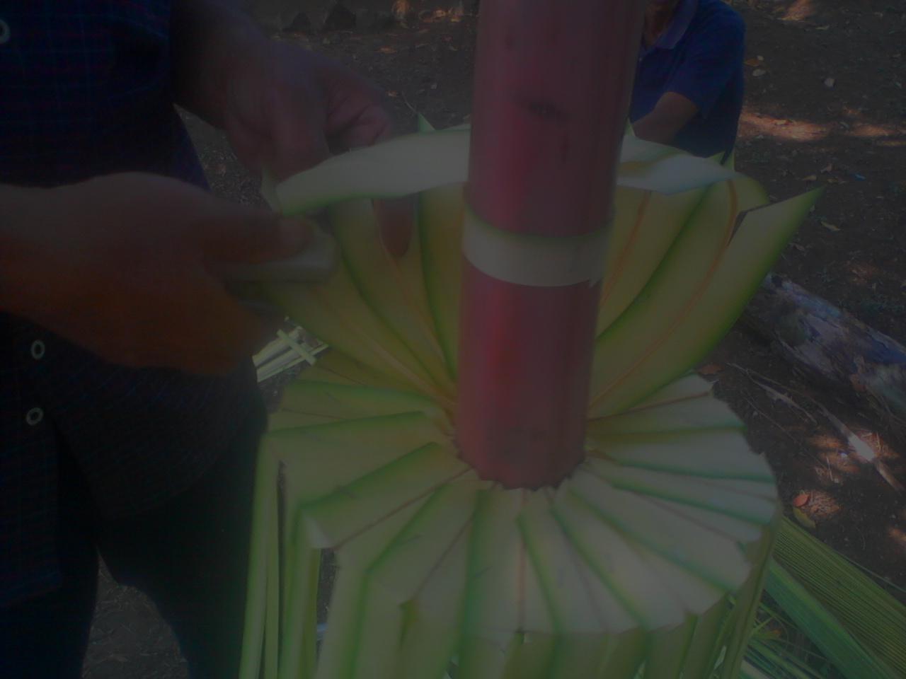 cara membuat janur kuning