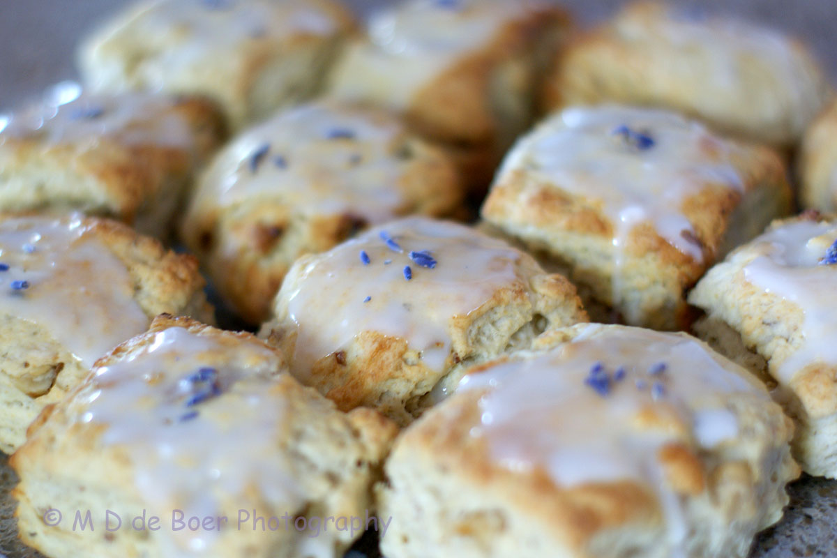 Anyways, back to the scones. I have linked to Joy's blog above, but in ...