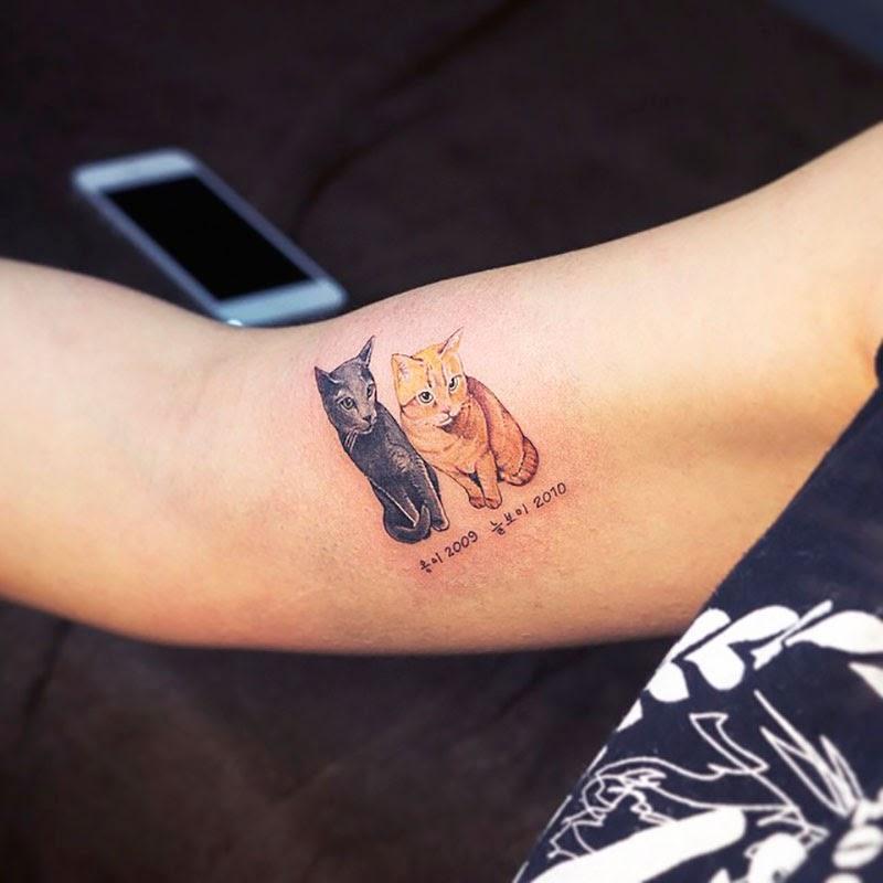 tatuajes de gatos de Soltattoo
