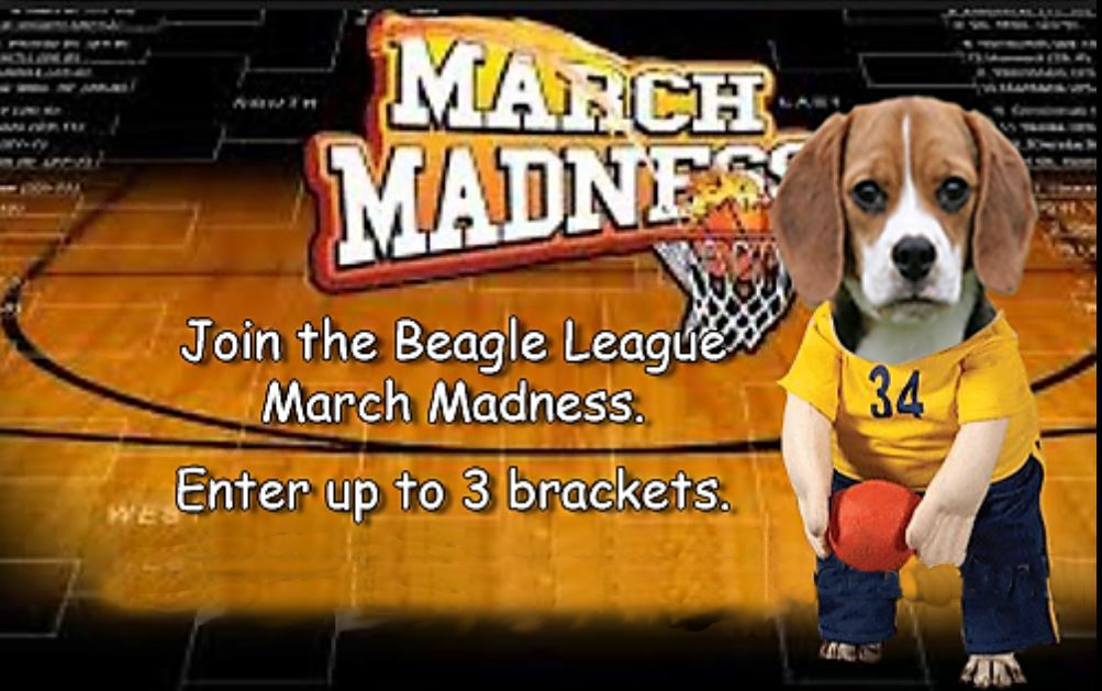 TruthBeagle Madness