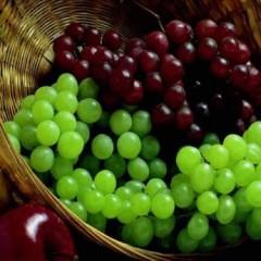الفاكهة غذاء ودواء
