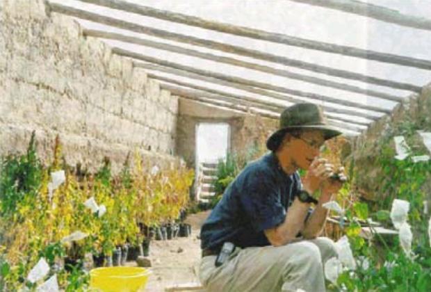 365 Aquaponics An Underground Greenhouse Or Walipini