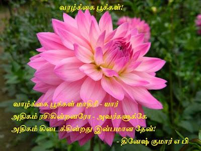 tamil love kavithai flowers