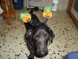 IT'S  HALLOWEEN  TIME!!!!!