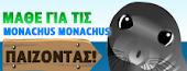 Μάθε για τις Monachus Monachus παίζοντας ! Aπό τη Mom Συμμαχούληδες- Kids Website (Ομάδα Προστασίας Περιβάλλοντος)