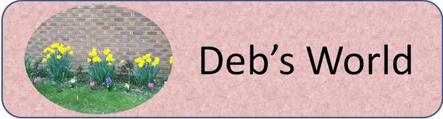 Deb's World